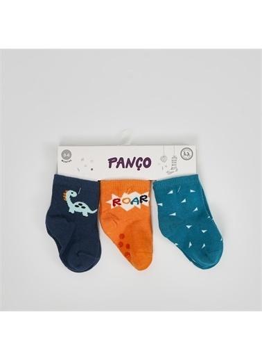 Panço 3 lü Çorap 19236801108 Renksiz